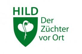 Hild_slide
